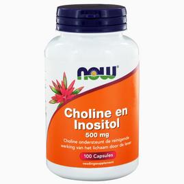 Choline and Inositol