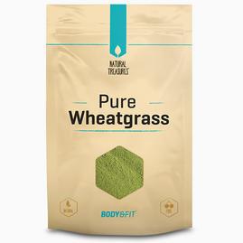 Pure Weizengras-Pulver